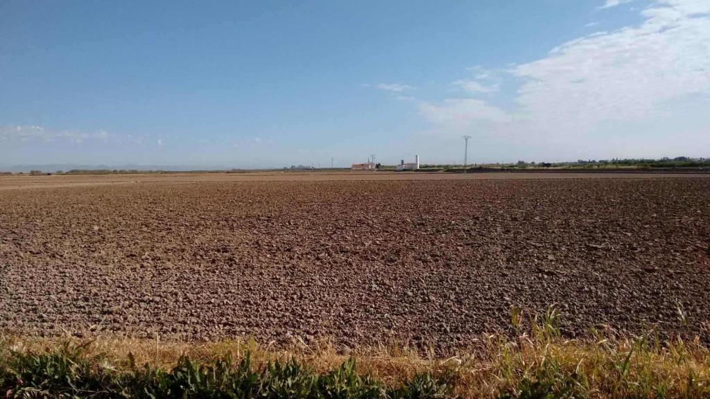 Preparación de tierra para el cultivo del arroz